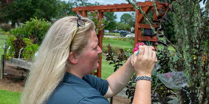 Department of Horticultural Sciences < Texas A&M University, College Station, TX